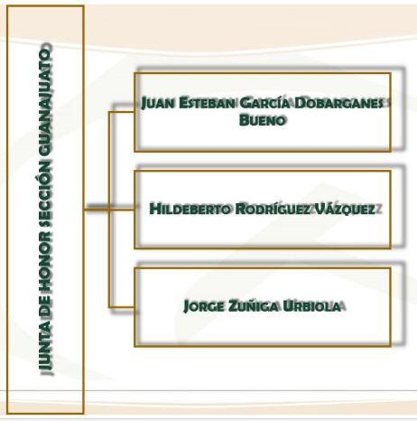 Junata de Honor Sección Guanajuato