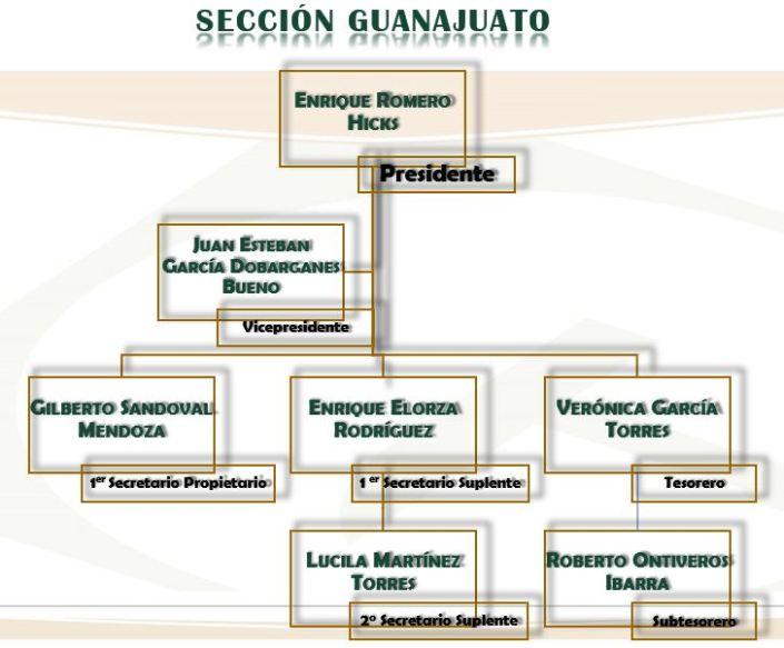 Sección Guanajuato