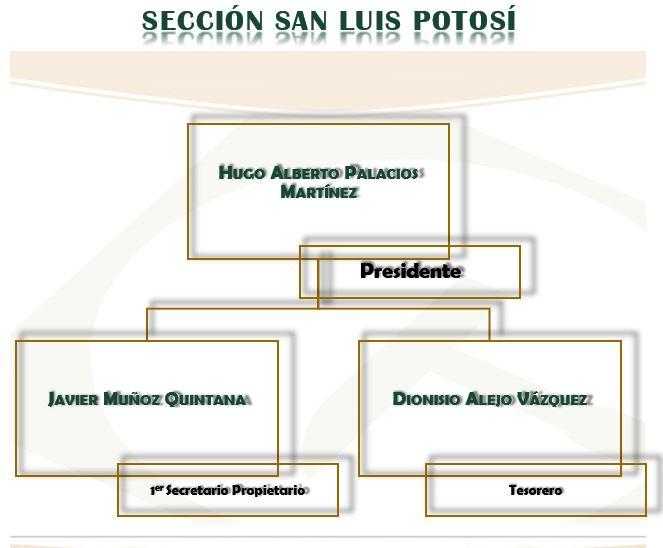 Sección San Luis Potosí